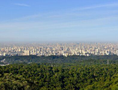 Eco Tour Sao Paulo