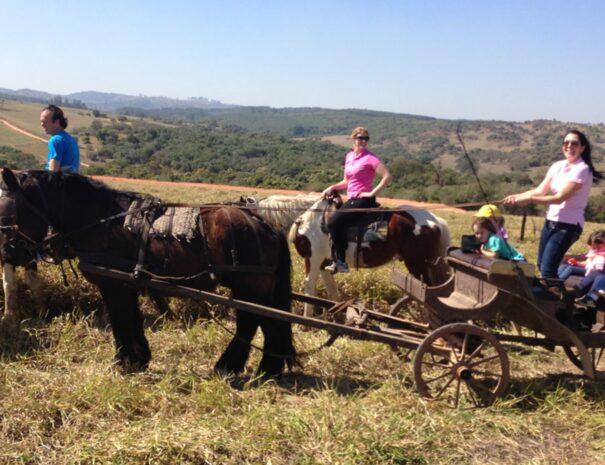 Horse back ride Farm Tour Sao Paulo