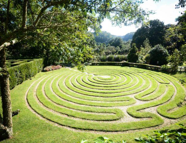 Tour to Campos do Jordao Amantkir
